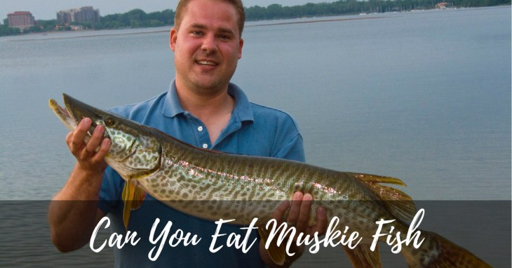 Can You Eat Muskie Fish? All You Need To Know