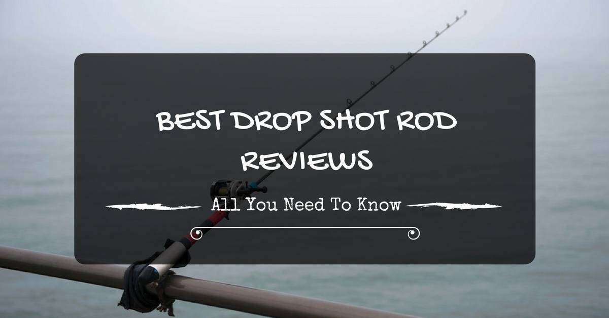 Best Drop Shot Rod Reviews