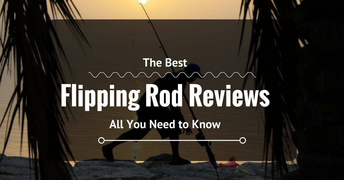 Best Flipping Rod Reviews