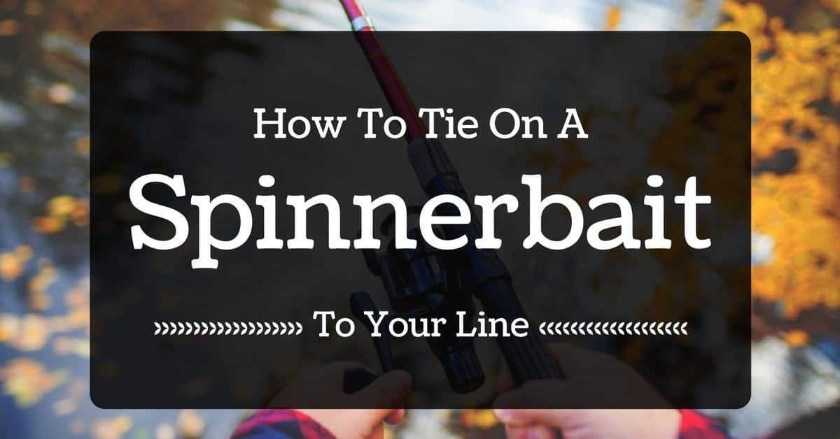 How To Tie On A Spinnerbait