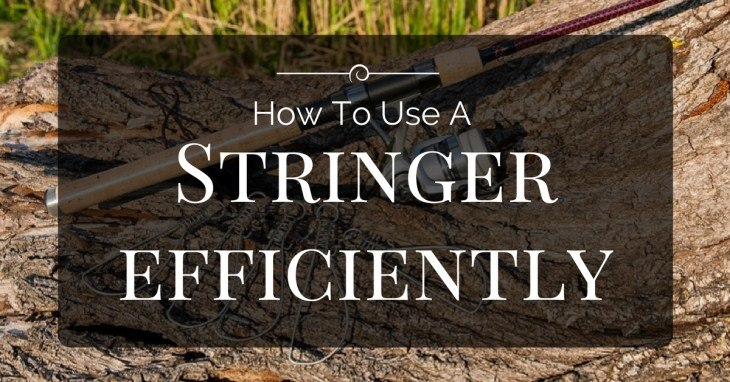 How To Use A Stringer