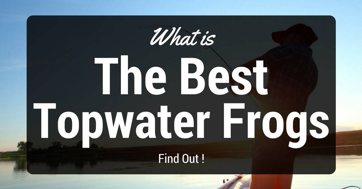 Best Topwater Frogs Reviews