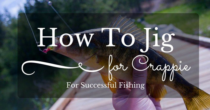 How To Jig for Crappie