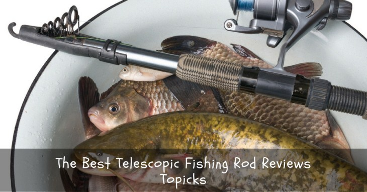 The Best Telescopic Fishing Rod Reviews: All You Need To