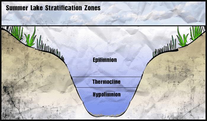 summer lake stratification zones