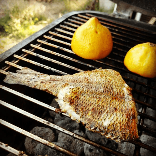 grilled crappie