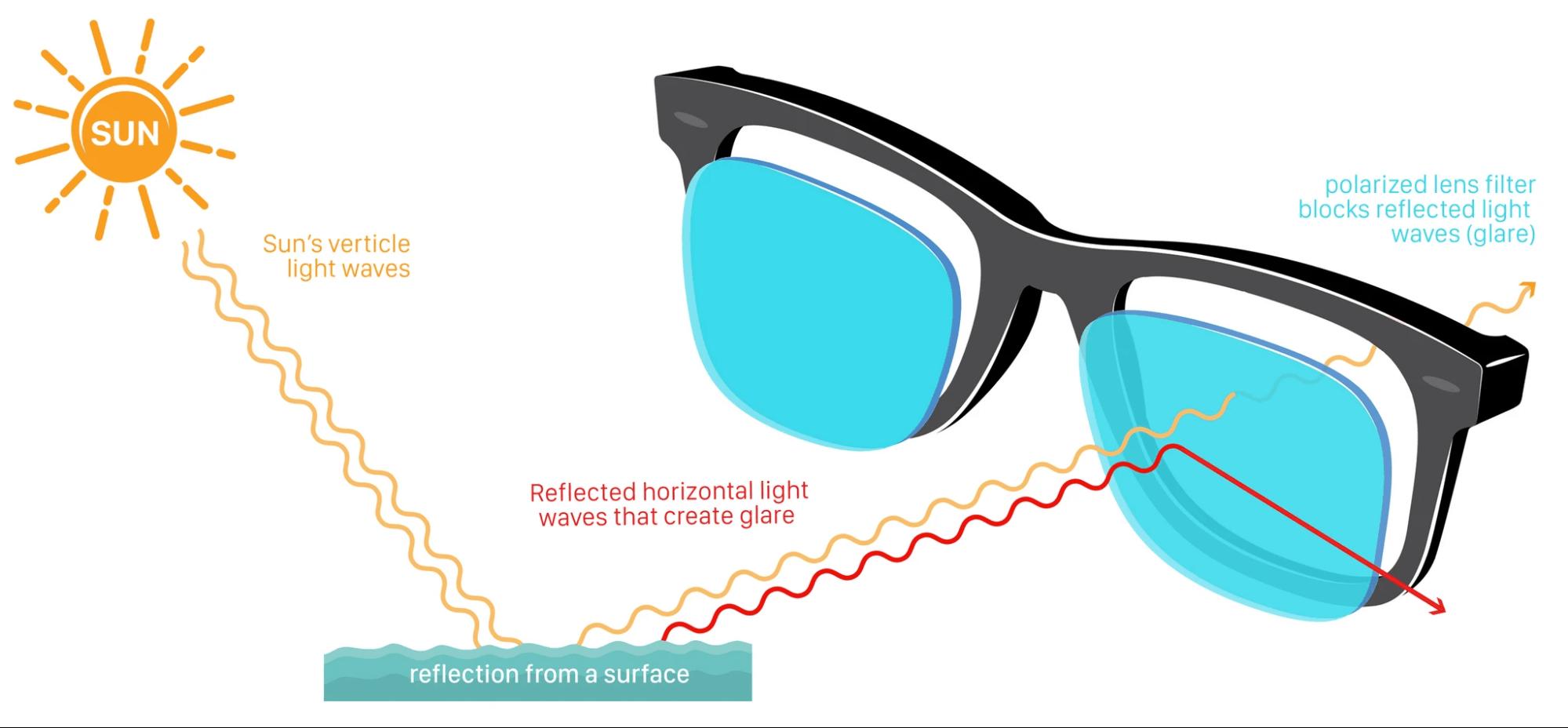 polarized lenses reduce glare while fishing