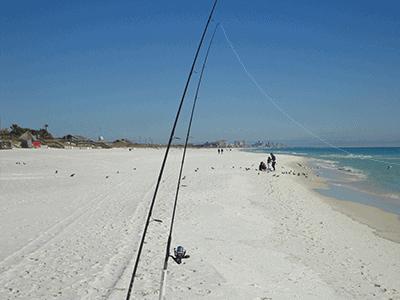 surf fishing on the beach