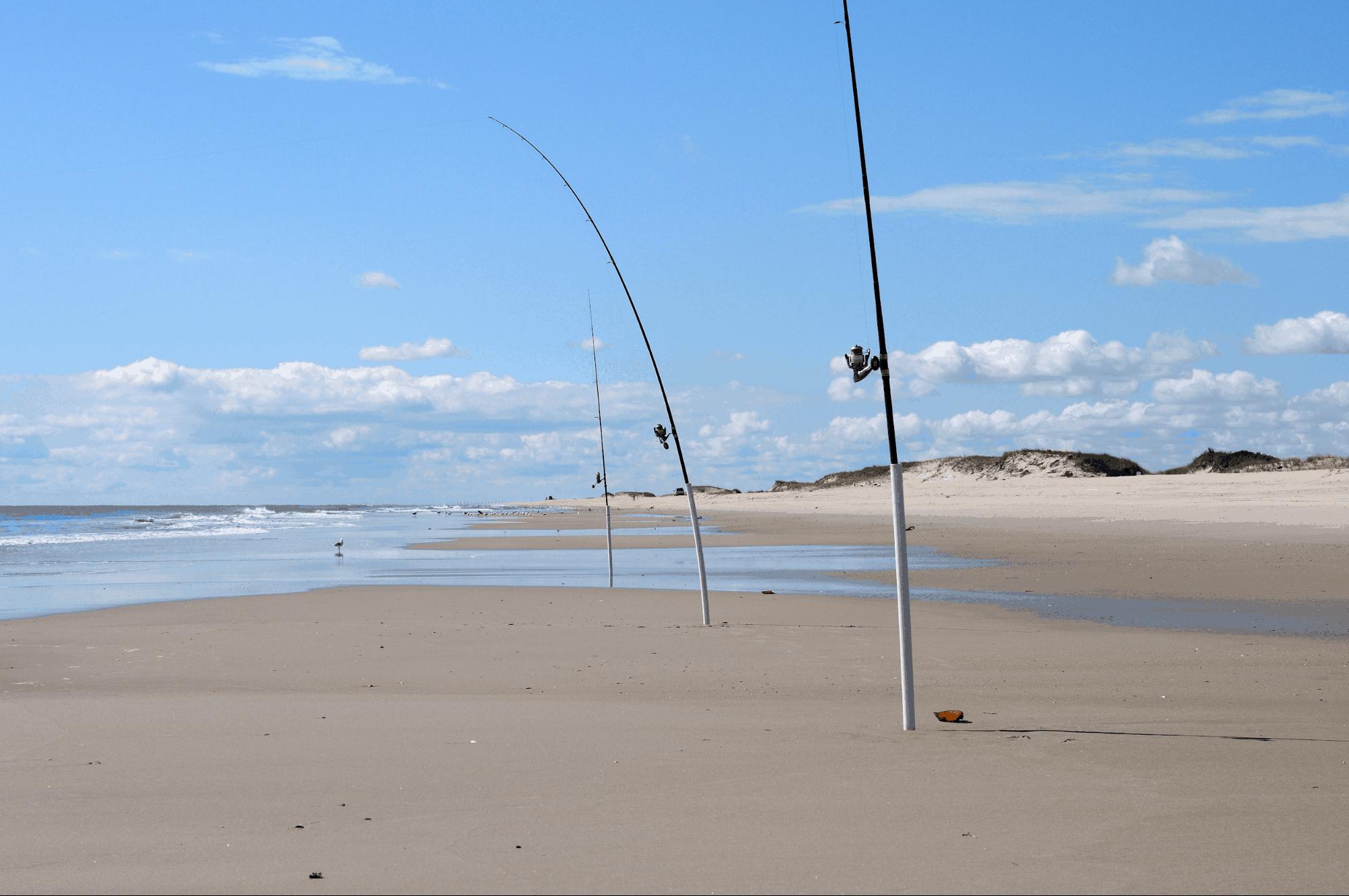 surf fishing tips