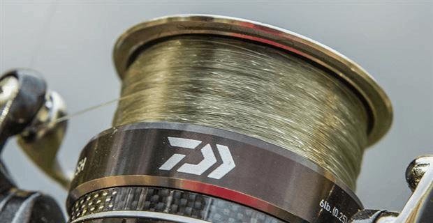 spinning reel spool