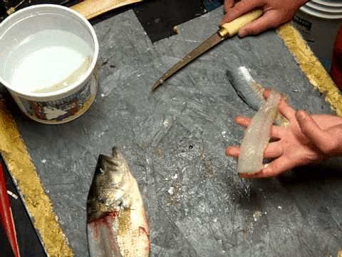 Clean bass filet