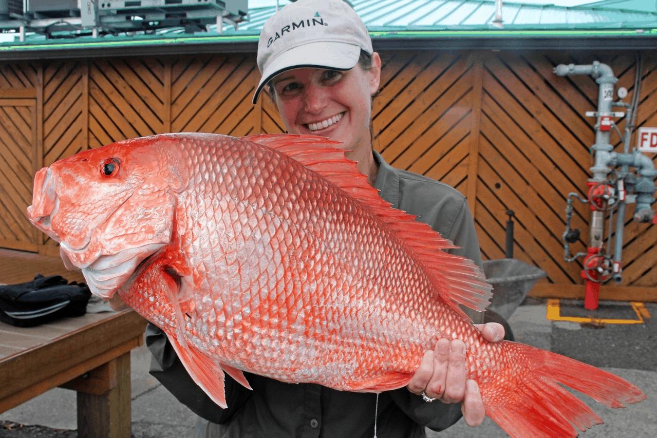 bottom fishing for red snapper