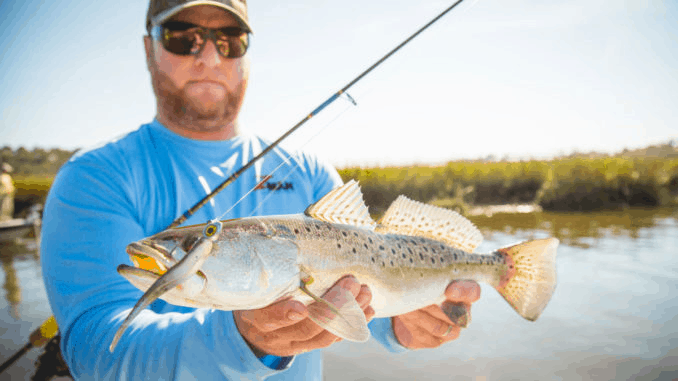 speckled trout caught using spinning rod